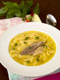 Goose noodle soup. Tasty goose soup with noodle Stock Images