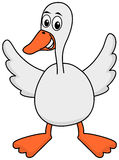 A goose with open wings Royalty Free Stock Photos