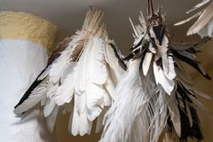 Goose quills used as writing pens collected in a group and tied. To a thread to store them stock photos