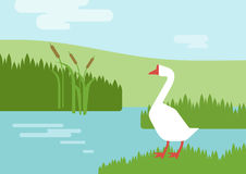 Goose riverhabitat flat design cartoon vector farm animals birds. Goose on the river lake bank habitat background flat design cartoon vector farm animals birds Royalty Free Stock Photos