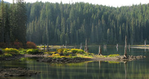 Goose See - Wa - Gifford Pinchot National Forest Stockfoto