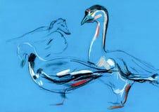 Goose sketch Stock Photos