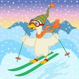Goose ski jumping Stock Photo