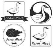Goose. Vector illustration (EPS 10 Royalty Free Stock Images