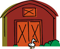 Goose Walks by a Barn. Big white goose walks by a red barn and bushes Royalty Free Stock Image