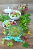 gooseberries images stock
