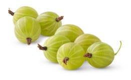 Gooseberries Imagens de Stock