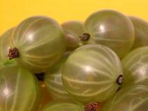 Gooseberries Imagens de Stock Royalty Free
