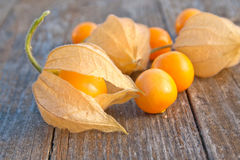 Gooseberries Royalty Free Stock Photos
