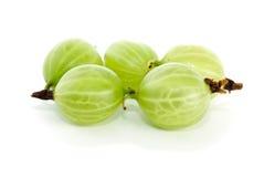Gooseberries. Freshly picked green gooseberries on white background Stock Photos