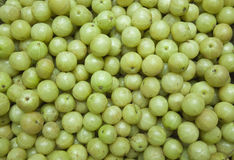 Gooseberries background Royalty Free Stock Photography
