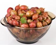 Gooseberries in bowl Stock Photos