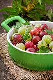Gooseberries in a bowl Stock Images