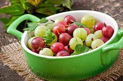 Gooseberries in a bowl Stock Image