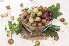 Gooseberries in a bowl Royalty Free Stock Photos