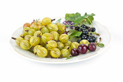 Gooseberries, cherries and black currants Royalty Free Stock Photography