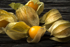 Gooseberries in Close Royalty Free Stock Photos