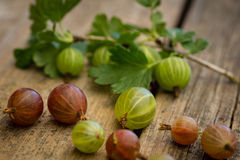 Gooseberries. Close-up of some fresh gooseberries stock photo