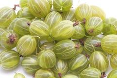 Gooseberries closeup stock images