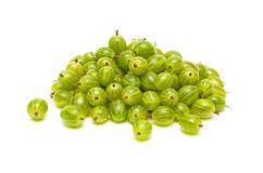 Gooseberries closeup on white background. Berries green gooseberries closeup on white background Royalty Free Stock Image