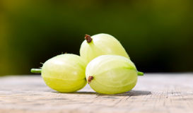 Gooseberries with green nature background. Some gooseberries placed on table with green nature background behind royalty free stock photos