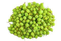 Gooseberries isolated on white background royalty free stock images