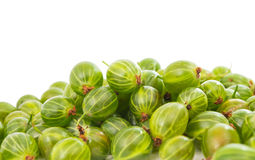 Gooseberries isolated Royalty Free Stock Images