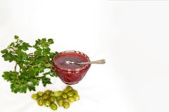 Gooseberries, jam and twig with leaves - mock up template Royalty Free Stock Image