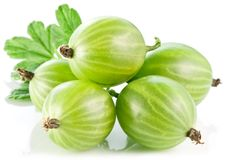 Gooseberries with leaves Stock Image