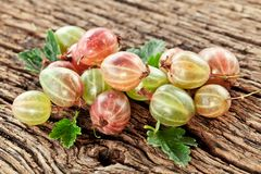 Gooseberries with leaves Royalty Free Stock Images