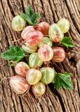 Gooseberries with leaves Royalty Free Stock Photos
