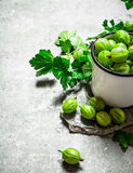 Gooseberries and leaves in a mug. On stone table. Royalty Free Stock Images