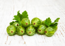 Gooseberries with leaves Stock Images