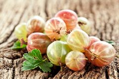 Gooseberries with leaves Stock Photos