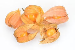 Gooseberries maduros Imagens de Stock