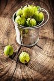 Gooseberries in metal bucket on vintage wooden board royalty free stock image