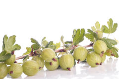 Gooseberries over white Stock Image