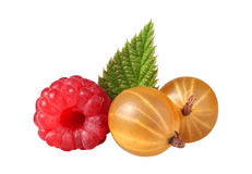 Gooseberries and raspberries Royalty Free Stock Photography