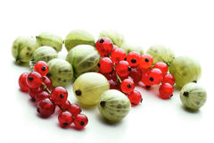Gooseberries and redcurrants on white background Stock Photo