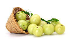 Gooseberries spilled out from a basket Stock Photography