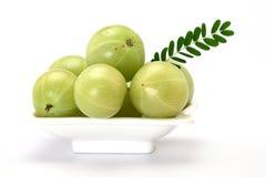 Gooseberries in a white bowl Royalty Free Stock Photos