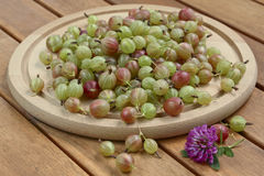Gooseberries on wooden plate and background. Clover stock photo