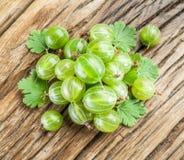 Gooseberries. Stock Photos