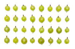 gooseberry imagens de stock