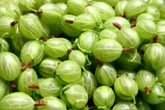 Gooseberry. Macro - diet, food, fruit Royalty Free Stock Photos