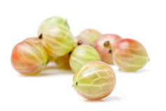 Gooseberry. On a white background stock image