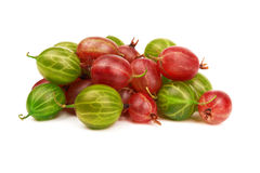 Free Gooseberry Royalty Free Stock Photos - 40680198
