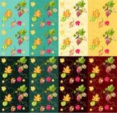 gooseberry Photo stock