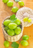 Gooseberry Royalty Free Stock Photos