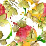 Gooseberry berry healthy food isolated. Watercolor background illustration set. Seamless background pattern. Gooseberry berry healthy food isolated. Watercolor stock illustration